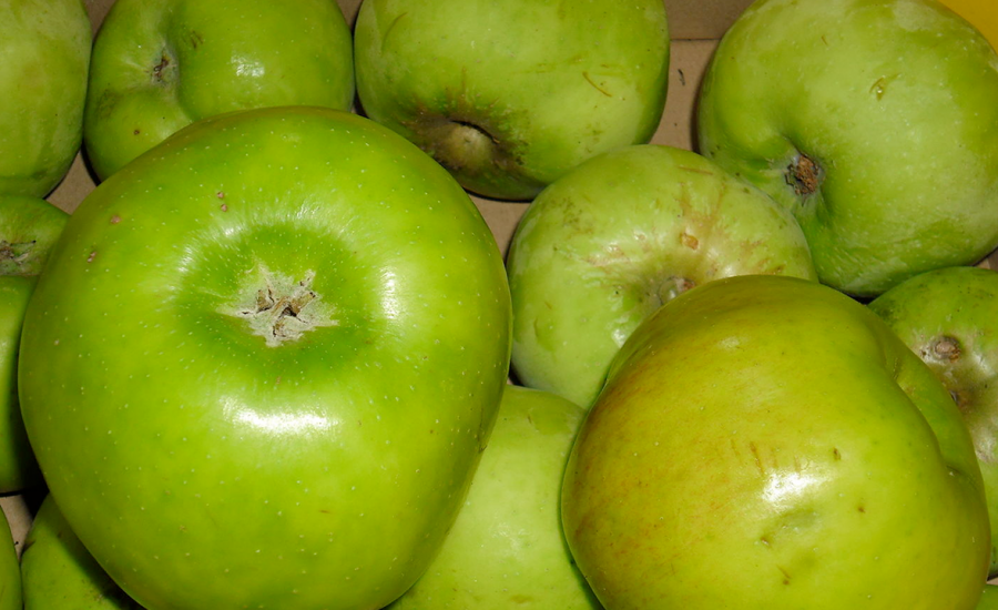Bramely Apples