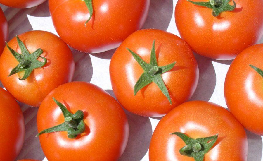 Round Tomatoes